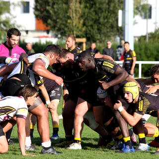 05/10 - Espoirs - J4 - Stade Rochelais 39 / 7 Mont-de-Marsan