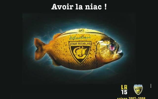 Stade Rochelais & Symaps Atlantique, déjà 15 ans d'histoire commune !