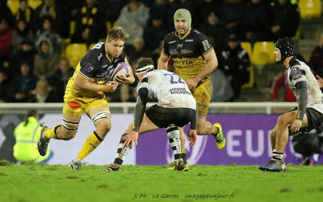 Stade Rochelais / Zebre : the team !