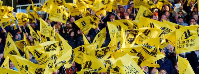 Les supporters au coeur de cette semaine européenne !